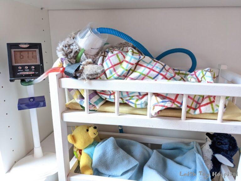 Teddies at Leith Toy Hospital